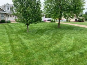 instant online quote for mowing